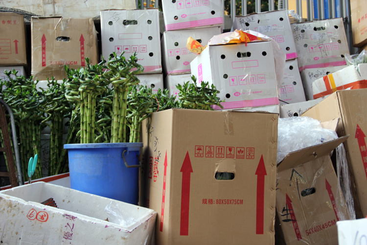 1701_hongkong_market_07