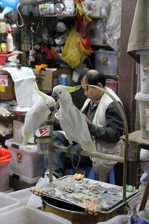 1701_hongkong_market_11