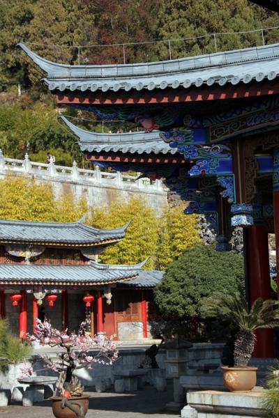 1702_lijiang_03