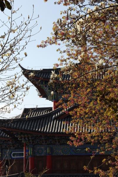 1702_lijiang_04
